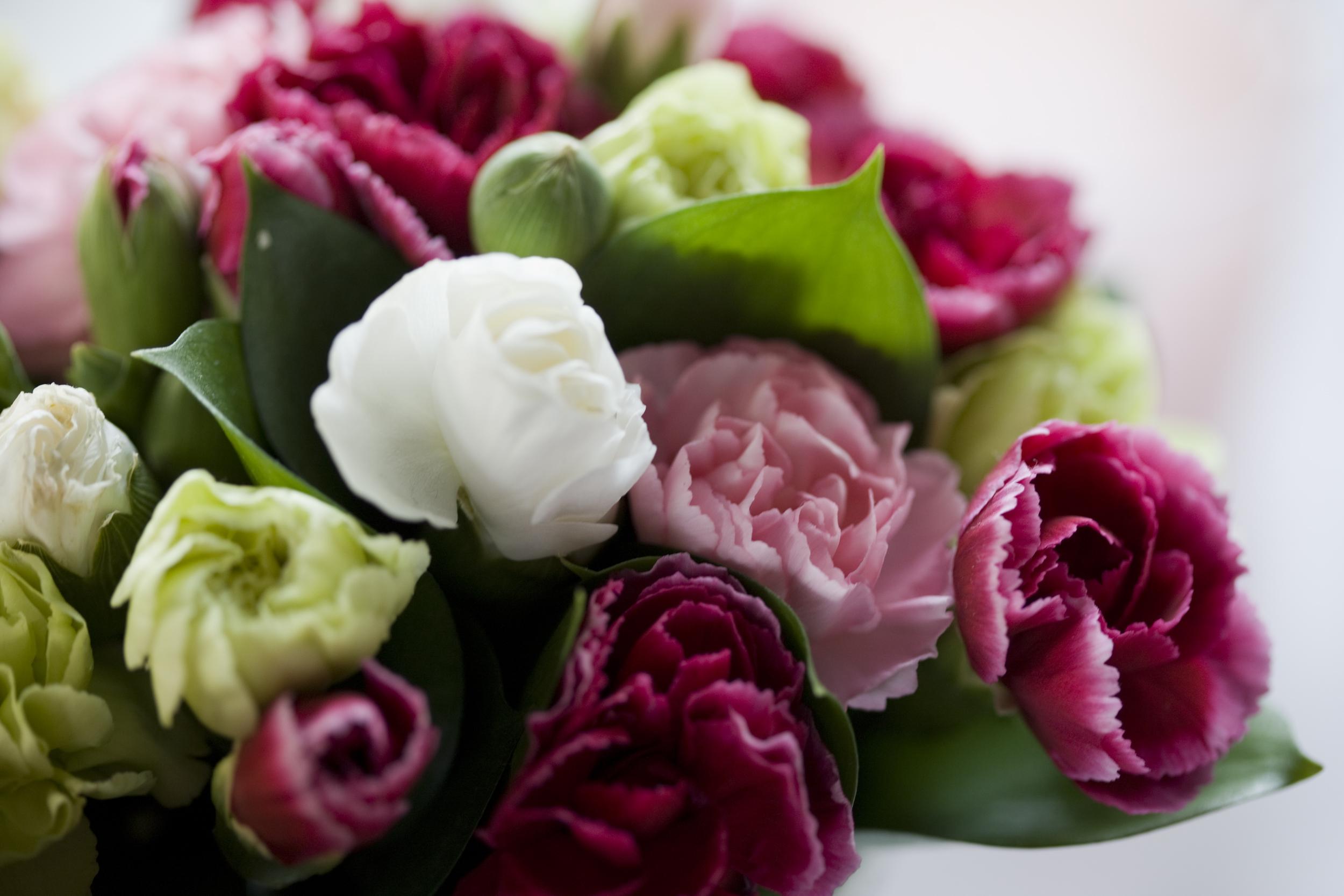 Newsletter Blumen